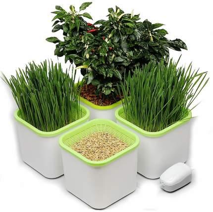Гидропонный набор для проращивания семян Здоровья Клад 4х-модульный 41747
