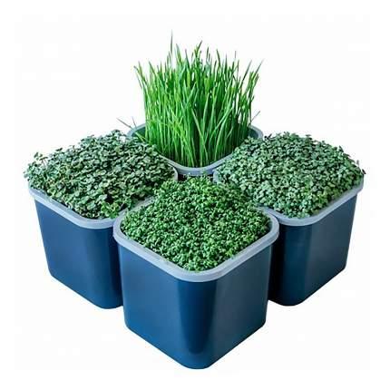 Гидропонный набор для проращивания семян Здоровья Клад 4х-модульный 45050