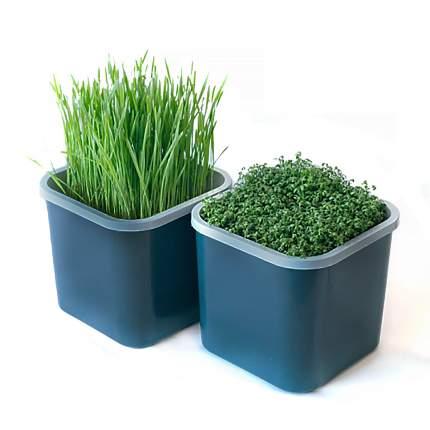 Гидропонный набор для проращивания семян Здоровья Клад 2х-модульный 45052
