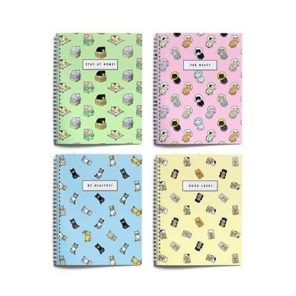 """Тетрадь """"Уютные котики"""", формат А5, 96 листов, клетка, цвет в ассортименте"""