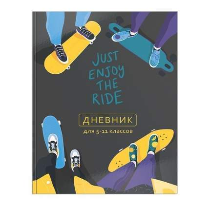 """Дневник для старших классов """"Модный скейтер"""", цвет разноцветный"""
