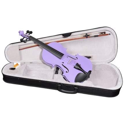 Фиолетовая скрипка Antonio Lavazza Vl-20/pr 4/4 , кейс,  смычок и канифоль в комплекте