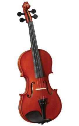 Скрипка Cervini Hv-100 Novice Violin Outfit, размер 1/2, легкий кофр, смычок, канифоль
