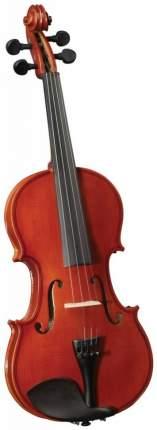 Скрипка Cervini Hv-100 Novice Violin Outfit, размер 4/4, легкий кофр, смычок, канифоль