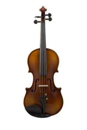 Скрипка в комплекте Prima P-480 4/4 (футляр, смычок, канифоль)
