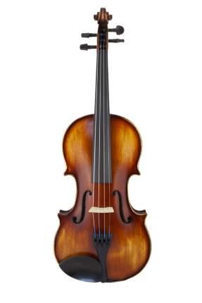 Скрипка в комплекте Prima P-300 4/4 (футляр, смычок, канифоль)