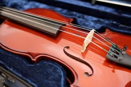 Скрипка 1/8 Gewa Set Allegro в комплекте