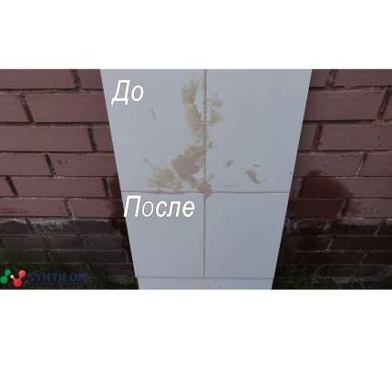 Смывка эпоксидов SYNTILOR Epossido 1 кг