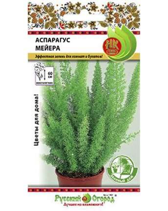 Цветы Аспарагус Мейера (зел.дом) (3шт)