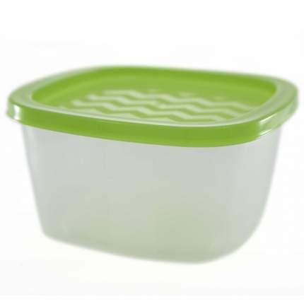 Контейнер Welle 0,9л,Transparent/Light Green (W-004)