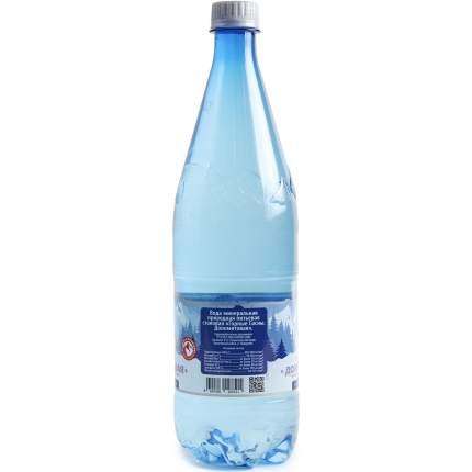 Вода Горные сосны Доломитовая минеральная природная негазированная 1л