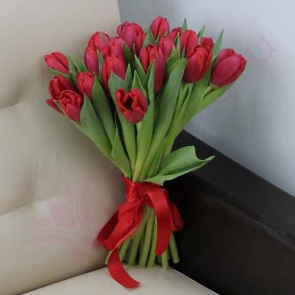 Монобукет из 25 красных тюльпанов FlorPro