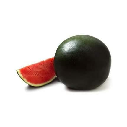 Арбуз Черный принц +-5 кг