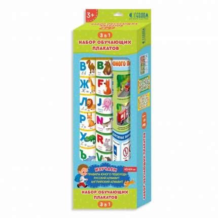 Набор обучающих плакатов (Азбука + Английский алфавит + Правила юного пешехода), 45x64 см