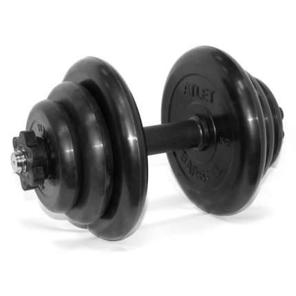 Гантель разборная 19 кг