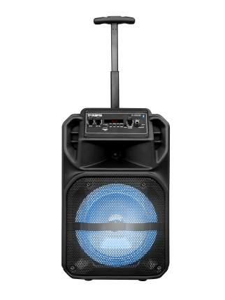 Музыкальный центр Telefunken TF-PS2302 Black