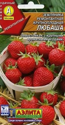"""Семена. Земляника ремонтантная крупноплодная """"Любаша"""""""