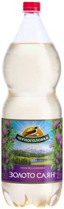Напиток Черноголовка Золото Саян 2л