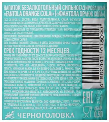 Напиток Черноголовка Fantola Orange Cola 500мл