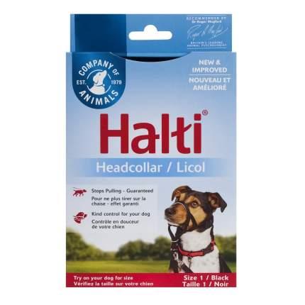 """Недоуздок  для собак COA Халти """"HALTI Healladcor"""", чёрный, Size 1"""