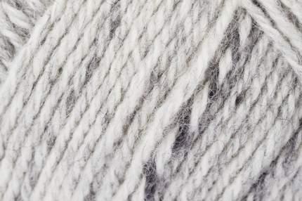 Пряжа для вязания SCHACHENMAYR SCH,TRACH,00088