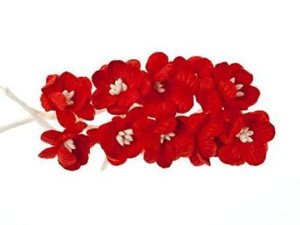 SCB3002 Набор цветки вишни из бумаги, упак./10 шт. (13 красный)