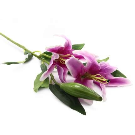 Лилии, 84 см (C Сиреневая)