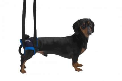 Вожжи Kruuse Walkabout Harness на задние конечности для собак (L)
