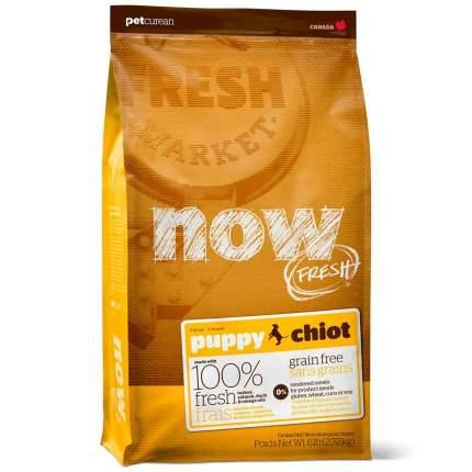 Сухой корм для щенков NOW Fresh Puppy, все породы, индейка, утка, овощи, 2,72кг