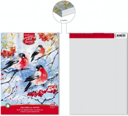 Альбом для рисования с бумагой для акварели на клею ArtBerry Снегири А4, 10 листов