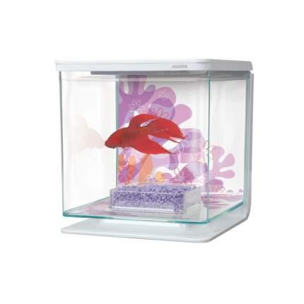 Аквариумный набор для рыб-петушков Hagen Marina Betta Kit Flower, бесшовный, 2 л