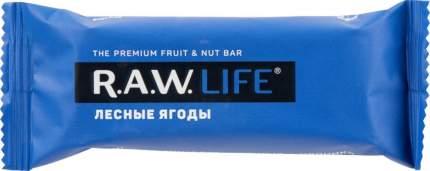 Орехово-фруктовый батончик R.A.W. LIFE лесные ягоды 47 г