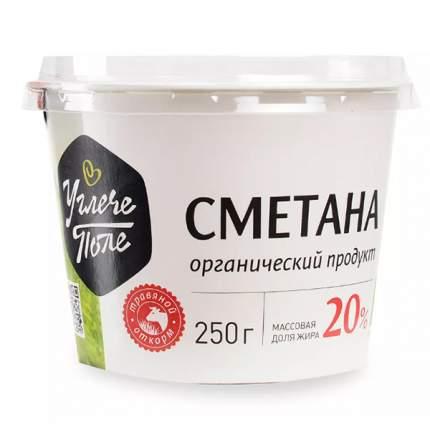 Сметана углече поле бзмж жир. 20 % 250 г пл/ст ооо агриволга россия