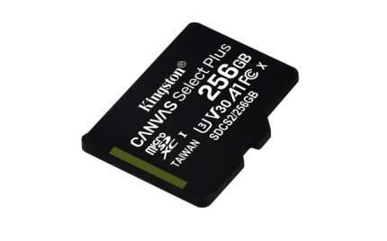 Карта памяти Kingston 256GB Canvas Select Plus (SDCS2/256GBSP)