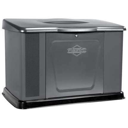 Генератор газовый Briggs & Stratton 040489