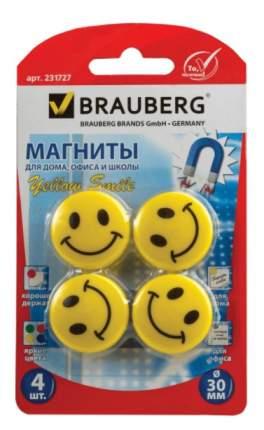 Магниты Brauberg 231727