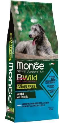 Сухой корм для собак Monge BWild Grain Free, беззерновой, анчоус, картофель, горох, 2,5кг