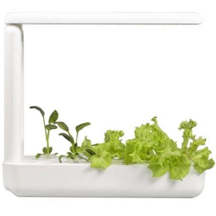 Набор для выращивания VegeBox K-Box Кухонная садовая ферма 24 Вт