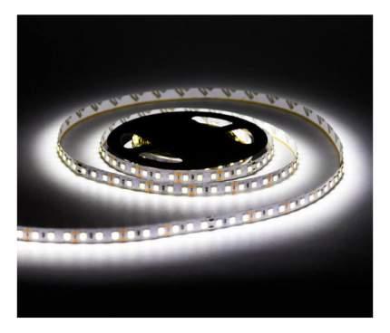 Светодиодная лента SMD 2835, 120 LED, 12 В, 9.6 Вт, IP65 1200 лм, холодный белый (6500 К)