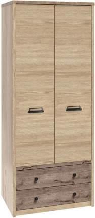 Распашной шкаф Дизель-2 Веллингтон