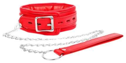 Красный ошейник на металлическом поводке с ручкой-петлей Bior toys