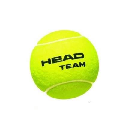 HEAD Tour 3шт - Коробка 72 мяча