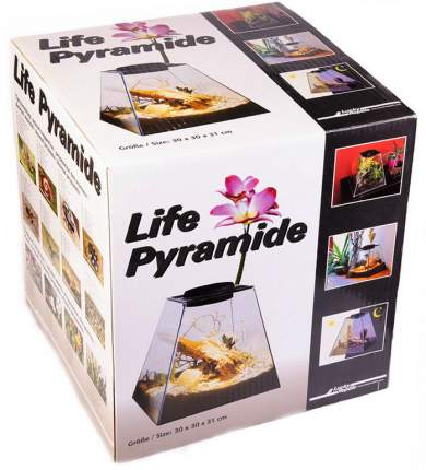Террариум для насекомых, растений, улитой Lucky Reptile Пирамида, 30х30х30 см
