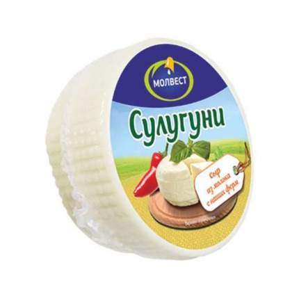 Сыр Молвест сулугуни 45% 300 г