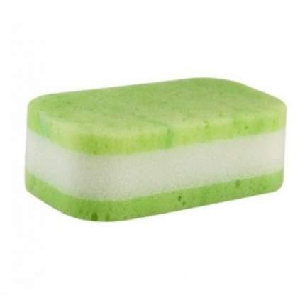 Губка для купания Canpol арт. 43/105 цвет зеленый