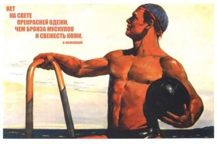 """Плакат СТ-Диалог """"Нет на свете прекрасней одежи..."""", СОВ-677, лам.бумага, 60х40 см"""