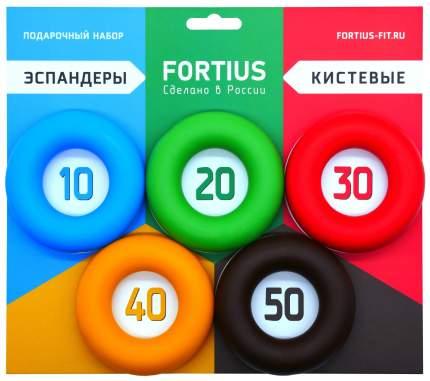 Кистевой эспандер Fortius H180701 зеленый/красный/оранжевый/синий/черный, 5 шт.