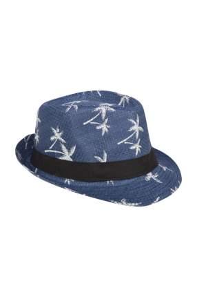 Шляпа мужская Mellizos H10-14M 535-1 синяя S
