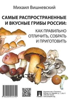 Самые распространенные и вкусные грибы России: как правильно отличить, собрать и пригот...