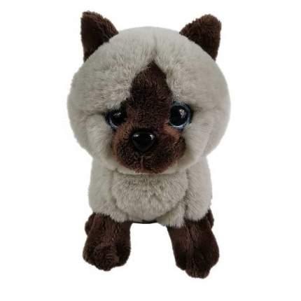 Мягкая игрушка Abtoys Кошка сиамская, 15см